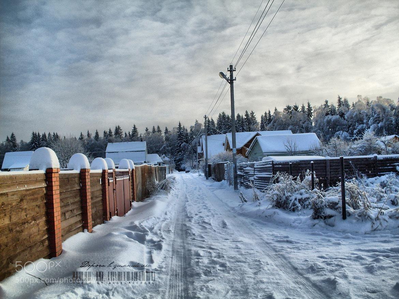 Photograph Дорога в зимний лес by Mikhail Zhukov on 500px