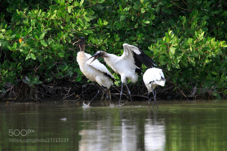 Photograph At the lagoon by Cristobal Garciaferro Rubio on 500px