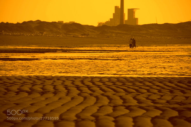 Photograph YELLOW by cljb Y on 500px