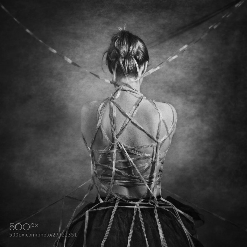 Photograph Entangled... by Sabrina de Vries on 500px