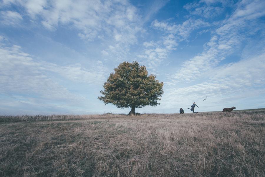 Autumn, автор — Petr Hricko на 500px.com