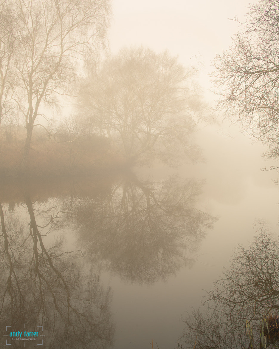 Photograph Misty Pond by Andy Farrer on 500px