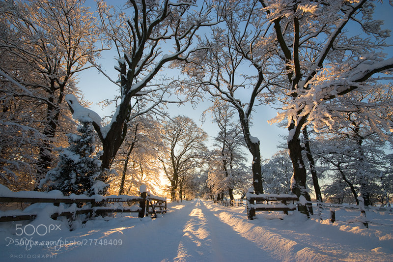 Photograph The Big Freeze by Philip Stewart on 500px