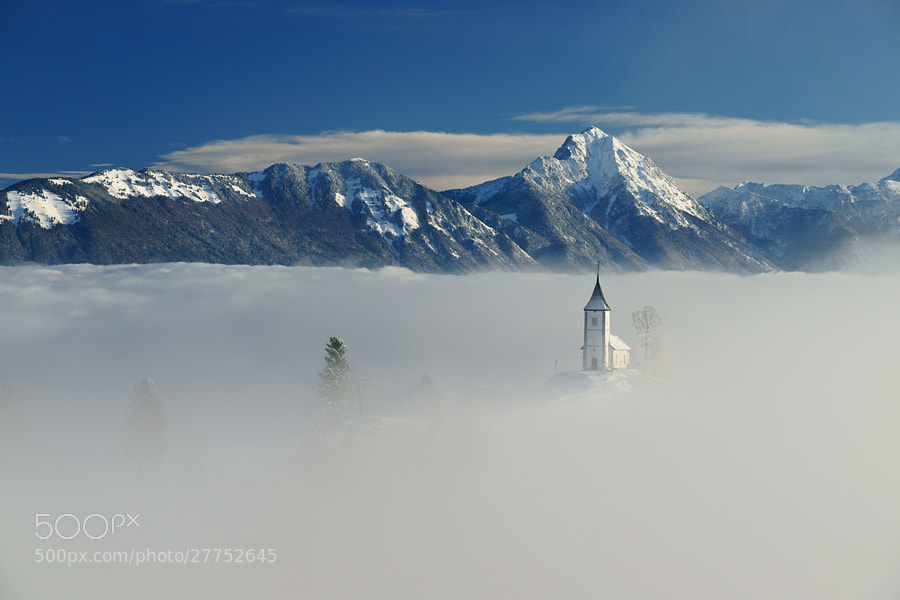 Photograph In the mist by Janez Tolar on 500px