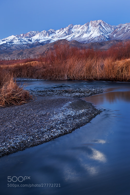 Photograph Dawn, Owens River Valley by Sarah Marino on 500px