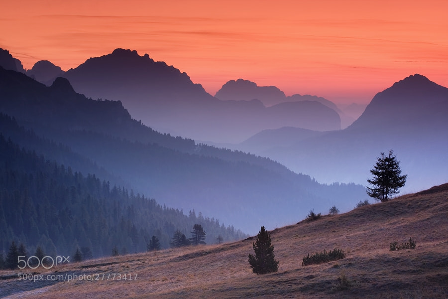 Photograph Morning in the Alps  by Daniel Řeřicha on 500px