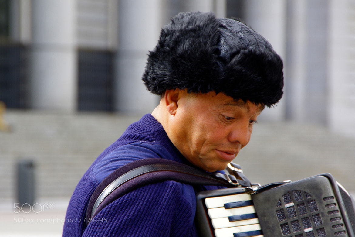 Photograph Accordionist by Gilles Le Drian on 500px