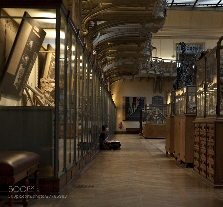 Photograph museum by claude ferrara on 500px