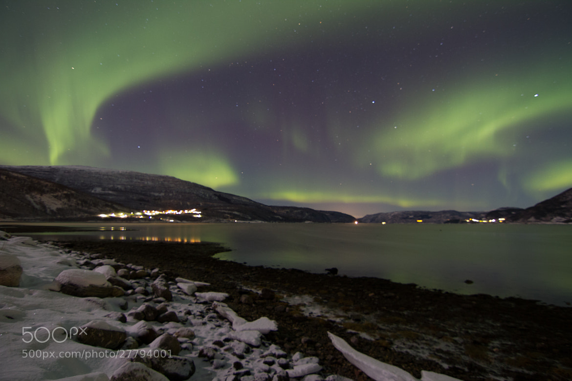 Photograph Aurora in Saltdal by Chris-André Paulsen on 500px
