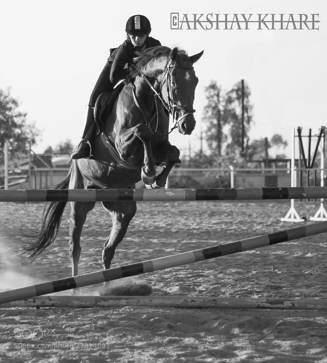 Photograph Equestrian academy Bhopal by Akshay Khare on 500px