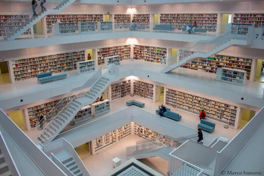 Library, автор — Marco Ivanovic на 500px.com