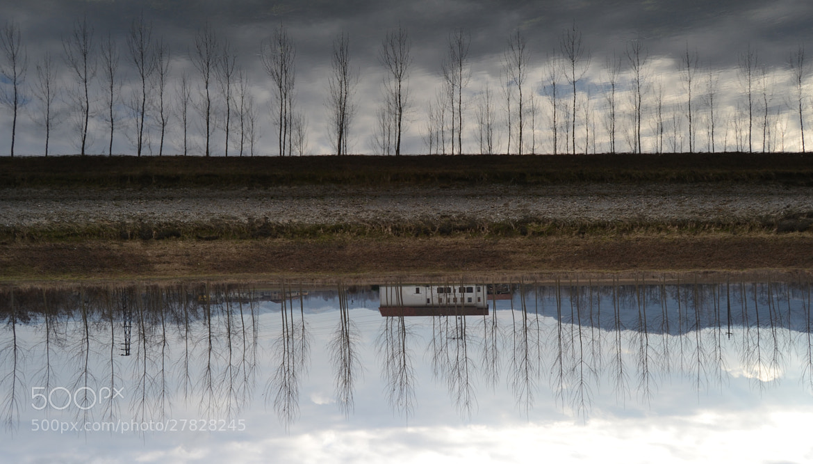 Photograph upside down. by Ludovica Colacino on 500px