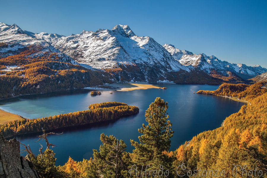 Photograph Magic Autumn in Engadina by Alfredo Costanzo on 500px