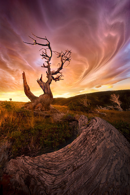 Photograph Lenticular Dimension by Marc  Adamus on 500px