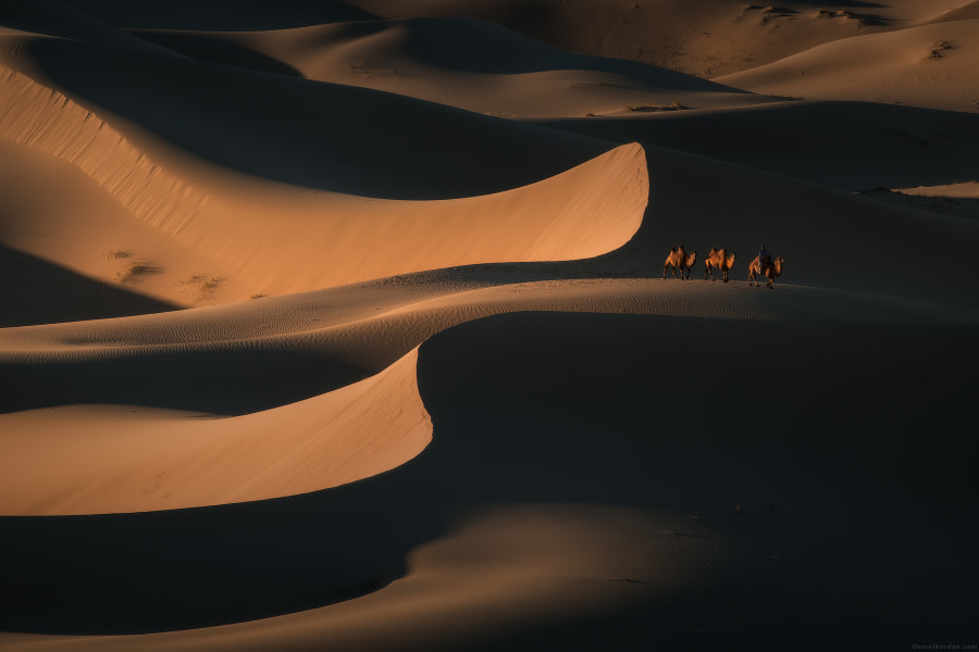 Gobi curves by Daniel Kordan on 500px.com