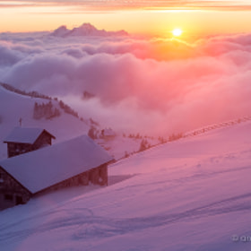 Rigi Sunset by Amazing Views Photography on 500px.com