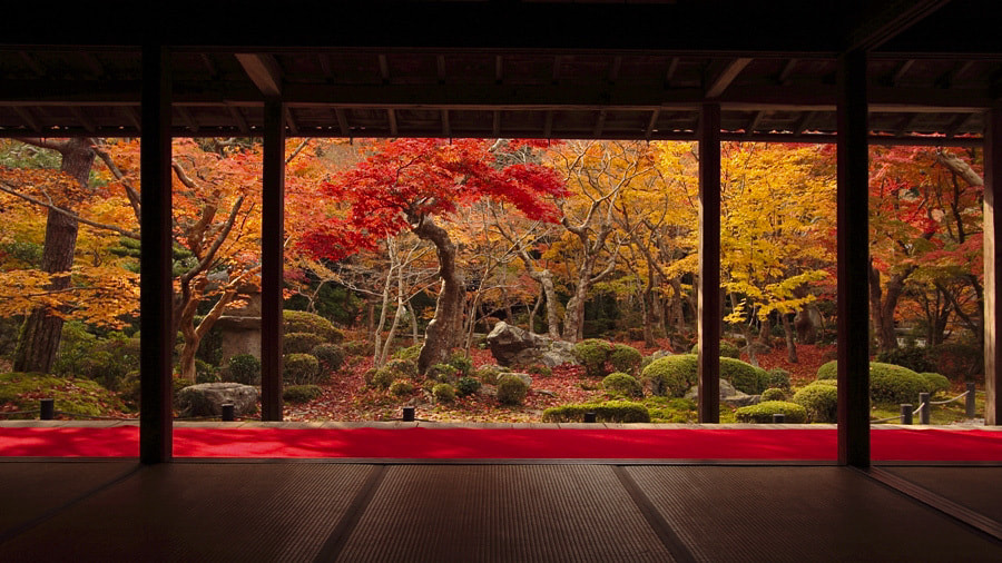 Photograph Autumn scenery by AKITO  on 500px