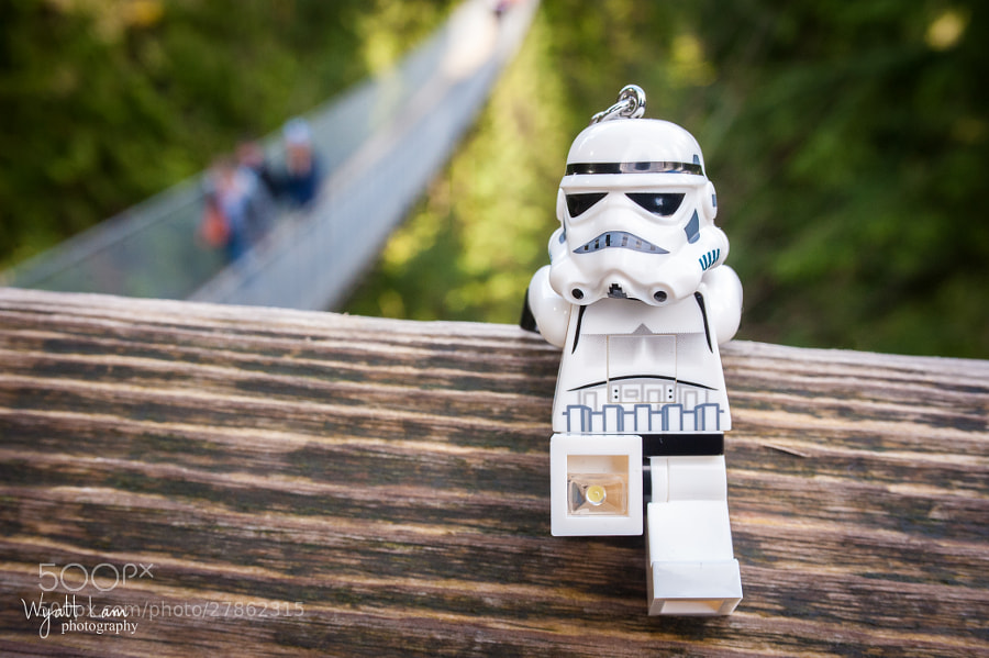 Calvin - Capilano Suspension Bridge 1