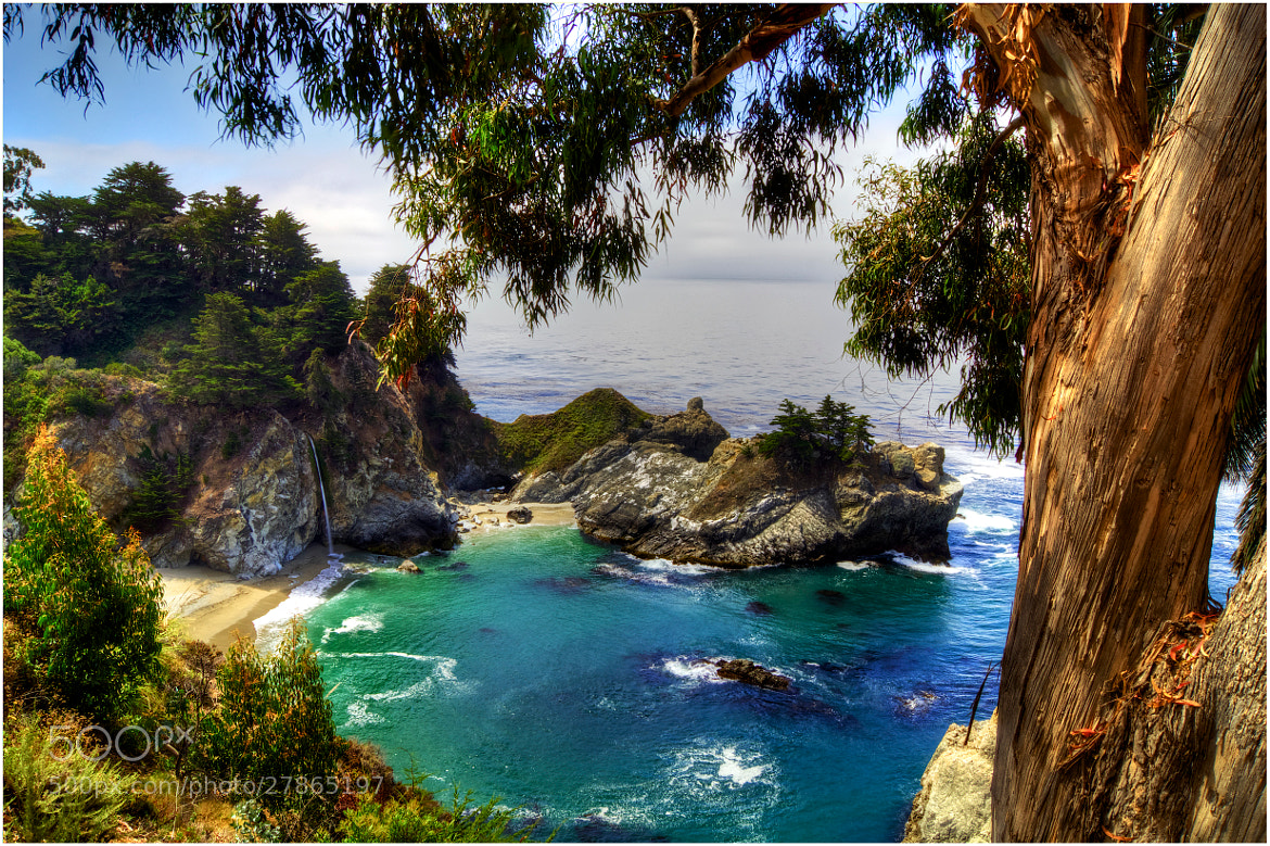 Photograph Julia Pfeiffer Burns State Park by Flo-Wi  on 500px