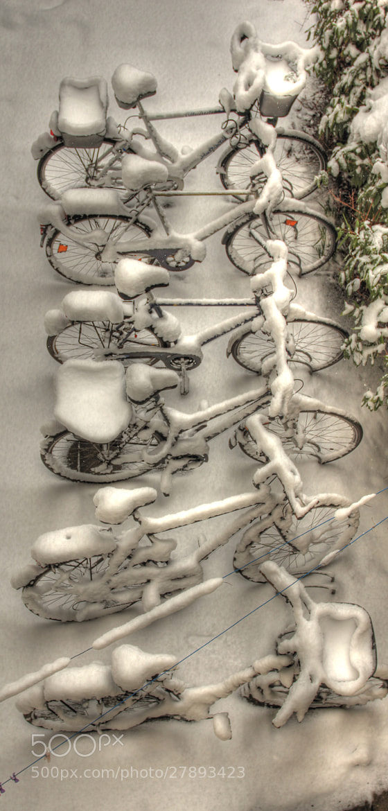 Photograph Bicycles in Winter by Olaf Wiesner on 500px