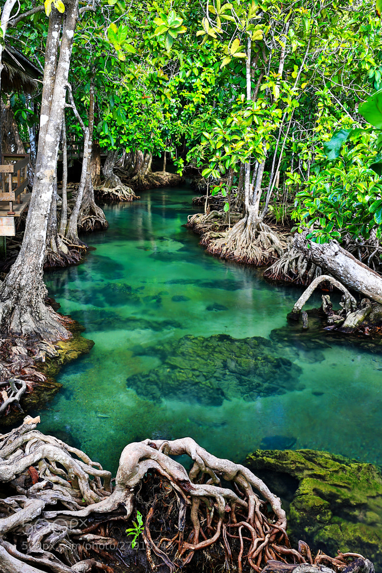 Photograph The Emerald Stream by Suppalak Klabdee on 500px