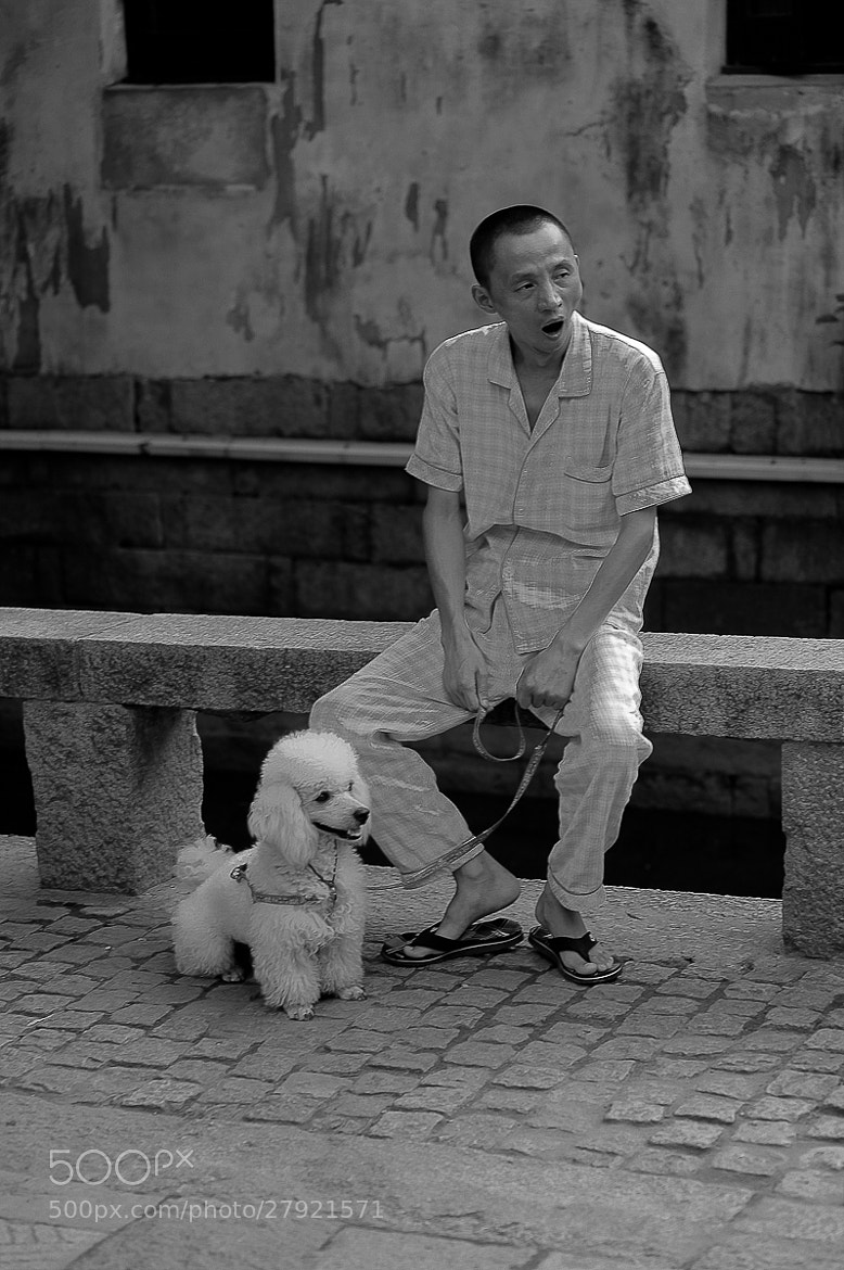 Photograph dog & man by heinz  homatsch on 500px