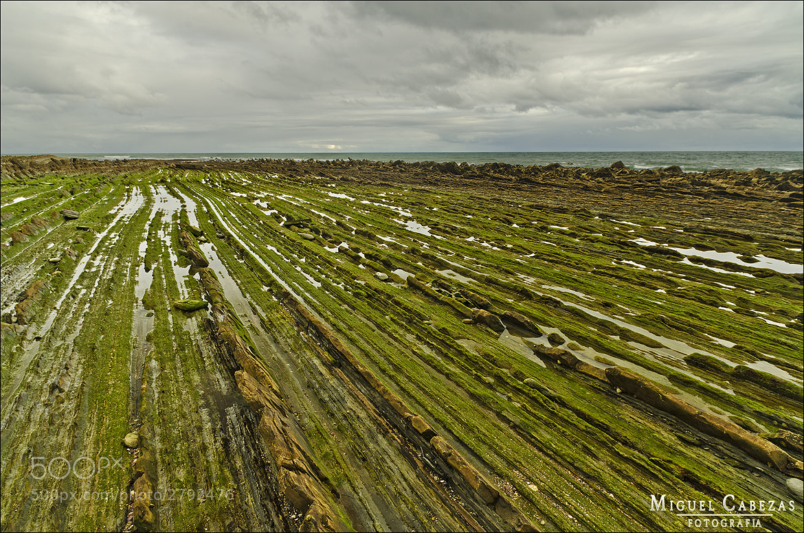 Photograph Flysch by Miguel  Cabezas on 500px