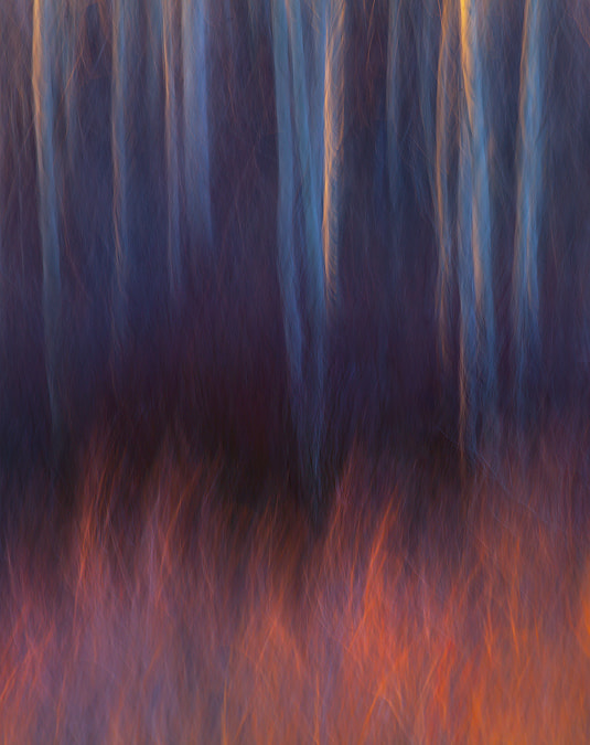 Photograph Forest Fire by Marc  Adamus on 500px