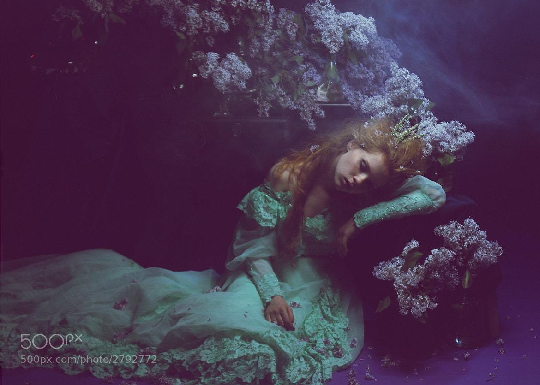 Photograph .... by Katerina Plotnikova on 500px