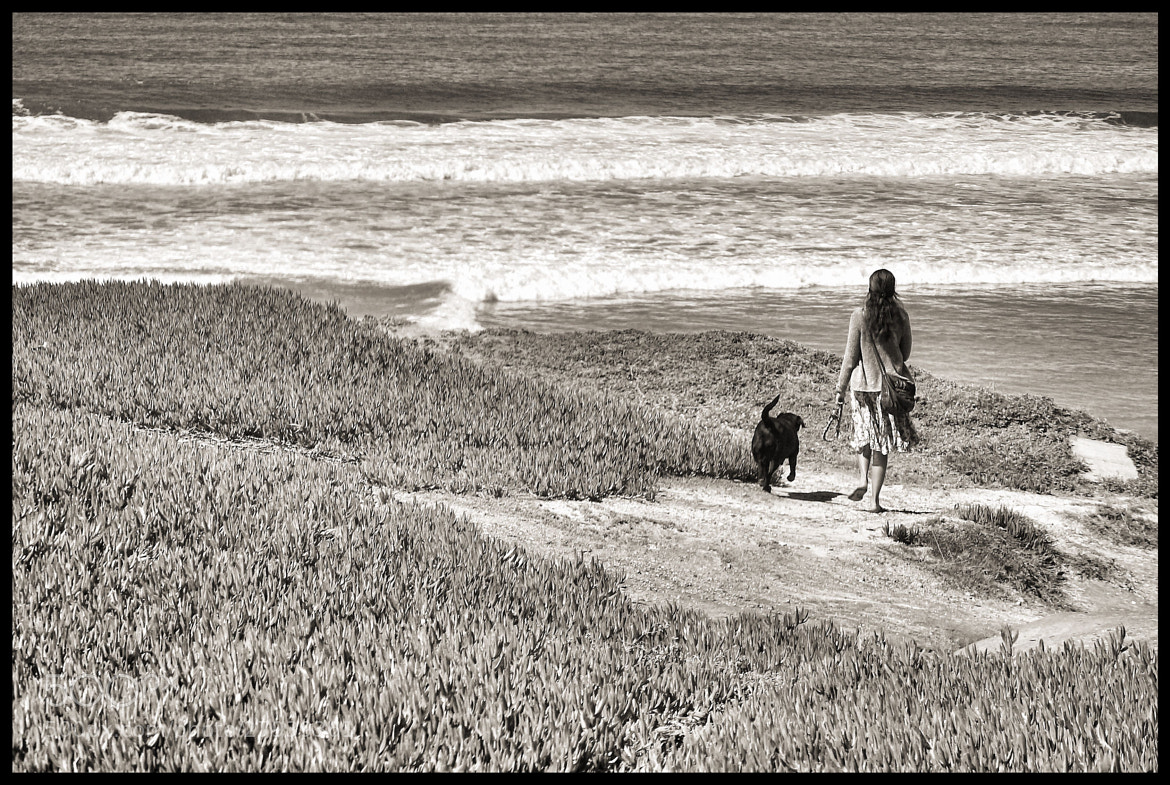 Photograph Early Walk by Carlos Bravo on 500px