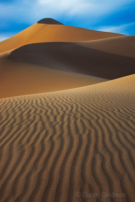 Photograph Elegant Dunes by Danny Seidman on 500px