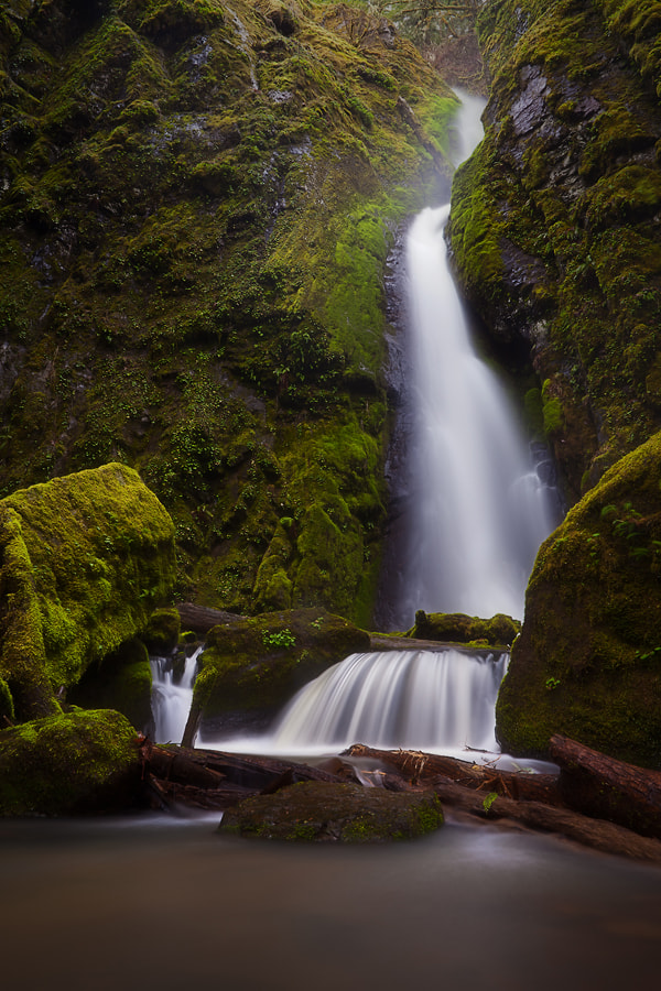 Photograph Mysterious Ways by Tula Top on 500px
