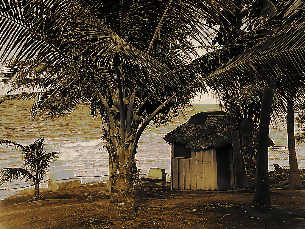 Photograph The Caribbean HuT by Ali KoRdZaDeh on 500px