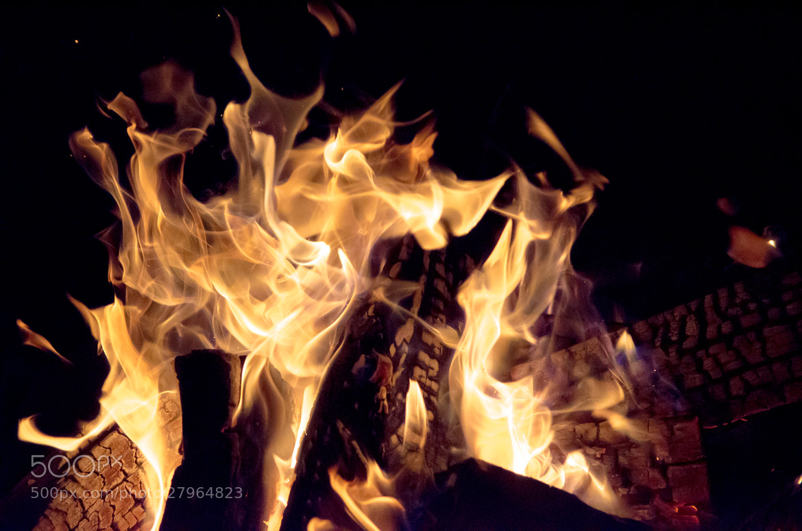 Photograph Fire three by Angelina  on 500px