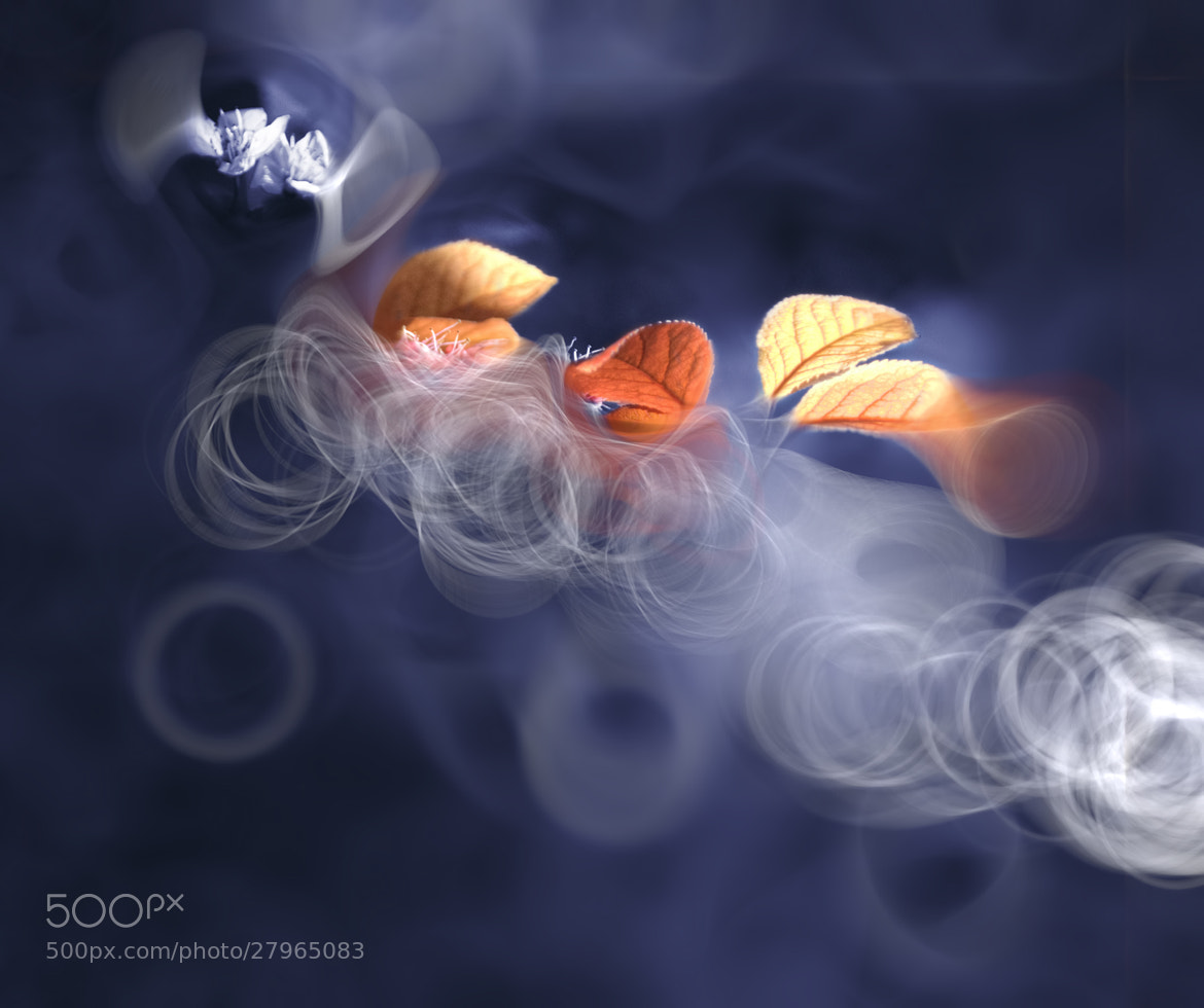 Photograph ::: Dimensional Merger ::: by Josep Sumalla i Jordana on 500px