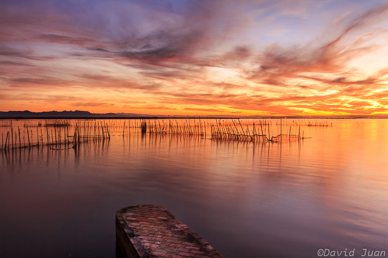 Photograph The little dock by David Juan on 500px
