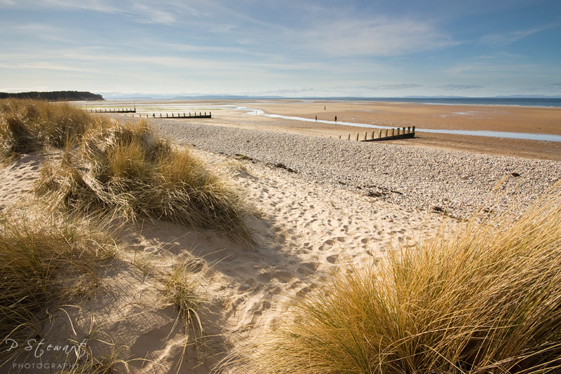 Photograph Findhorn Dunes by Philip Stewart on 500px