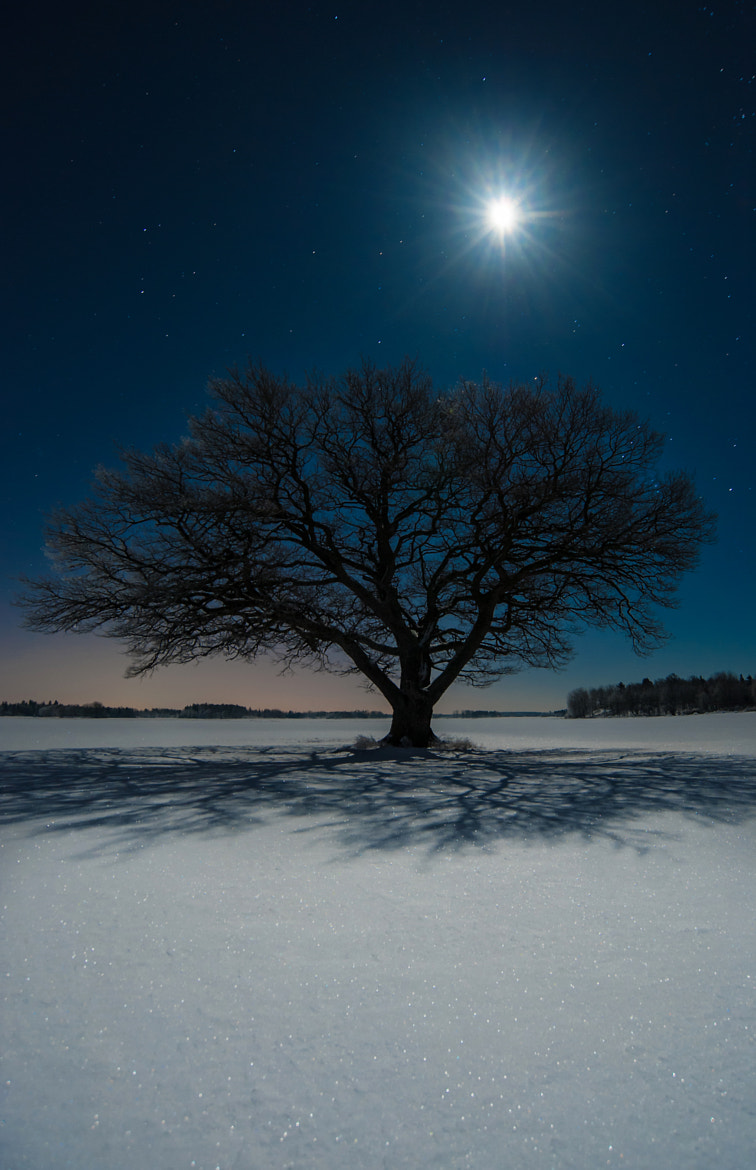 Photograph Lunar by Daniel Karlsson on 500px