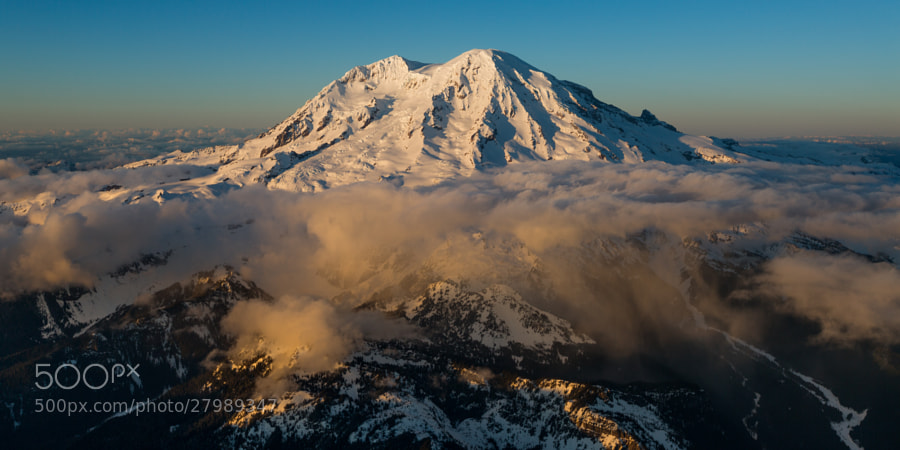 Mount Rainier's south side and Paradise meadows are covered in a thin layer of clouds with the evening glow of sunset cutting through.