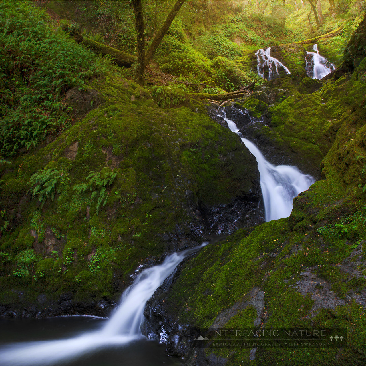 Photograph Tangents by Jeff Swanson on 500px