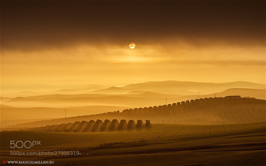 Photograph Sol naciente sobre La Campiña (Sun rising over the Countryside) by Manuel Millán on 500px
