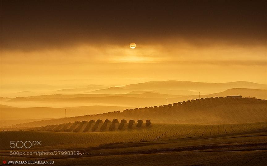 Photograph Sol naciente sobre La Campiña (Sun rising over the Countryside) by Manuel Millán on 500px