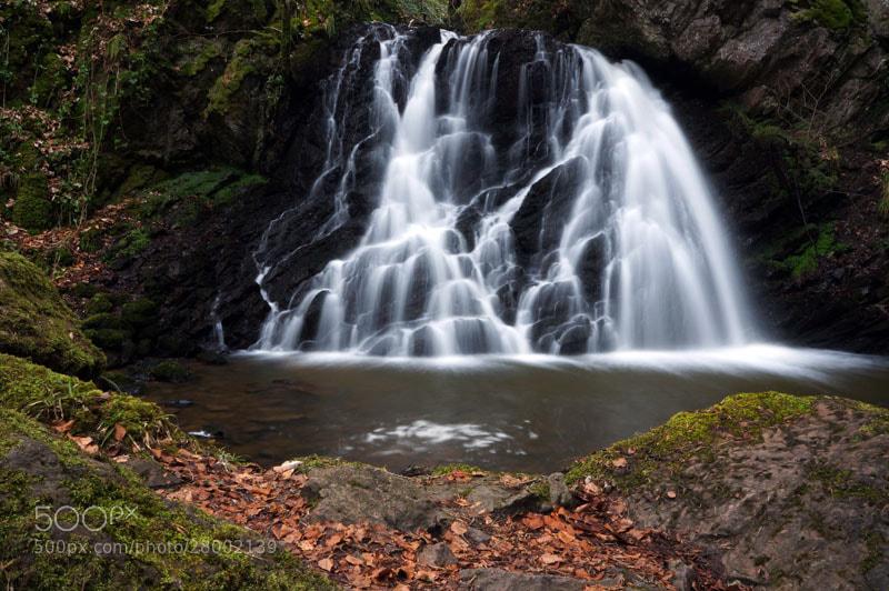 Photograph Fairy Glen, Rosemarkie, Black Isle, Scottish Highlands by Heather Leslie Ross on 500px