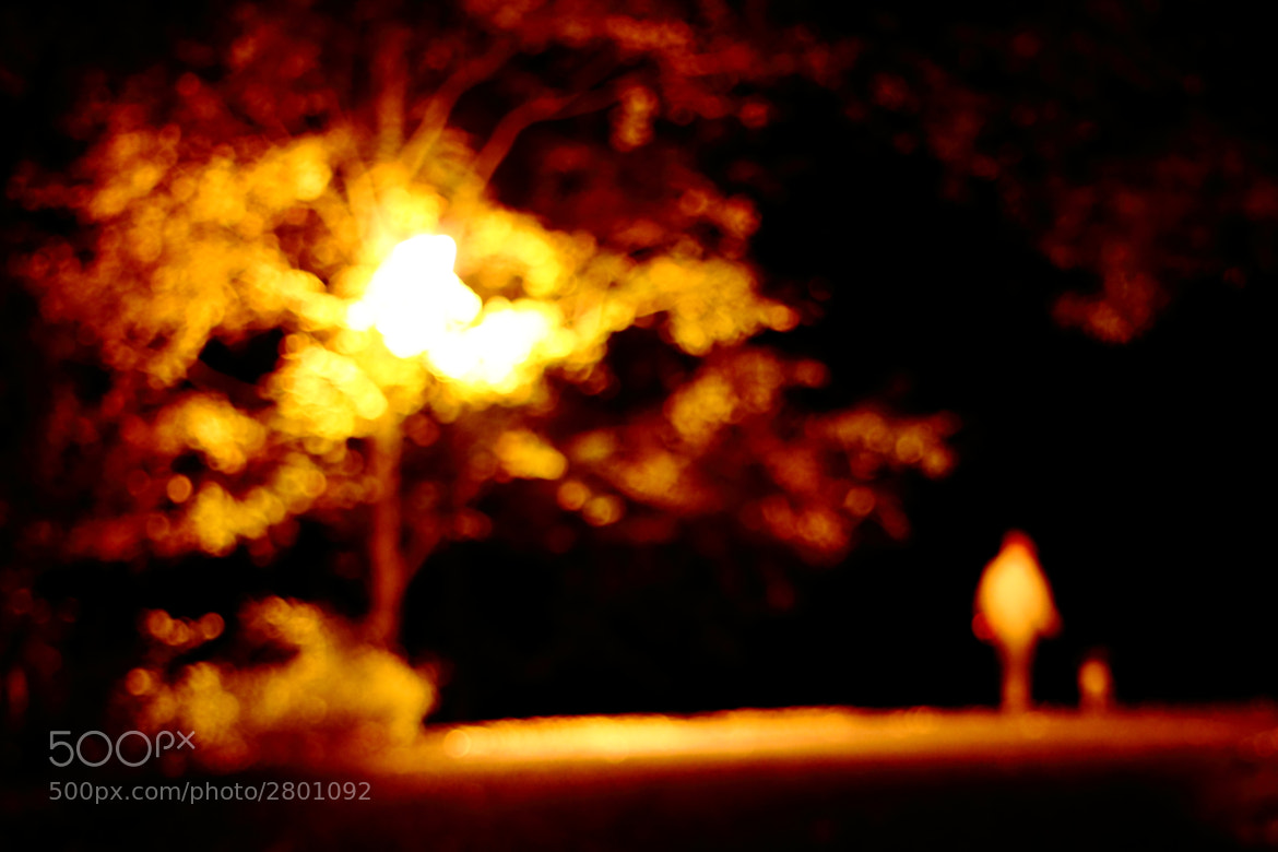 Photograph Burning the Midnight Bokeh by Paul Bellinger on 500px