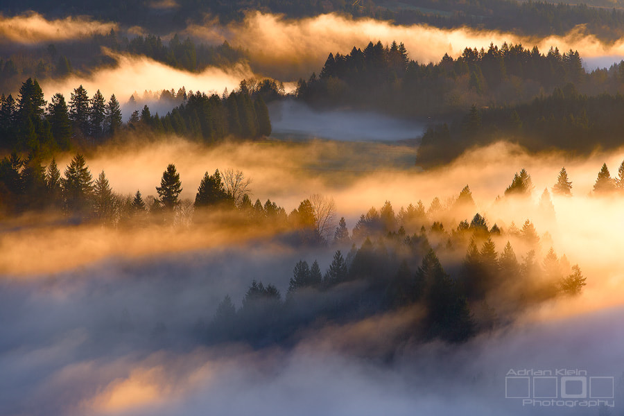 Photograph Valley Glow by Adrian Klein on 500px
