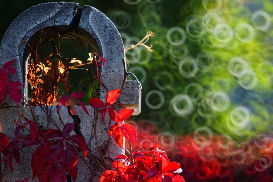 Chimney by Gina Nannina on 500px.com