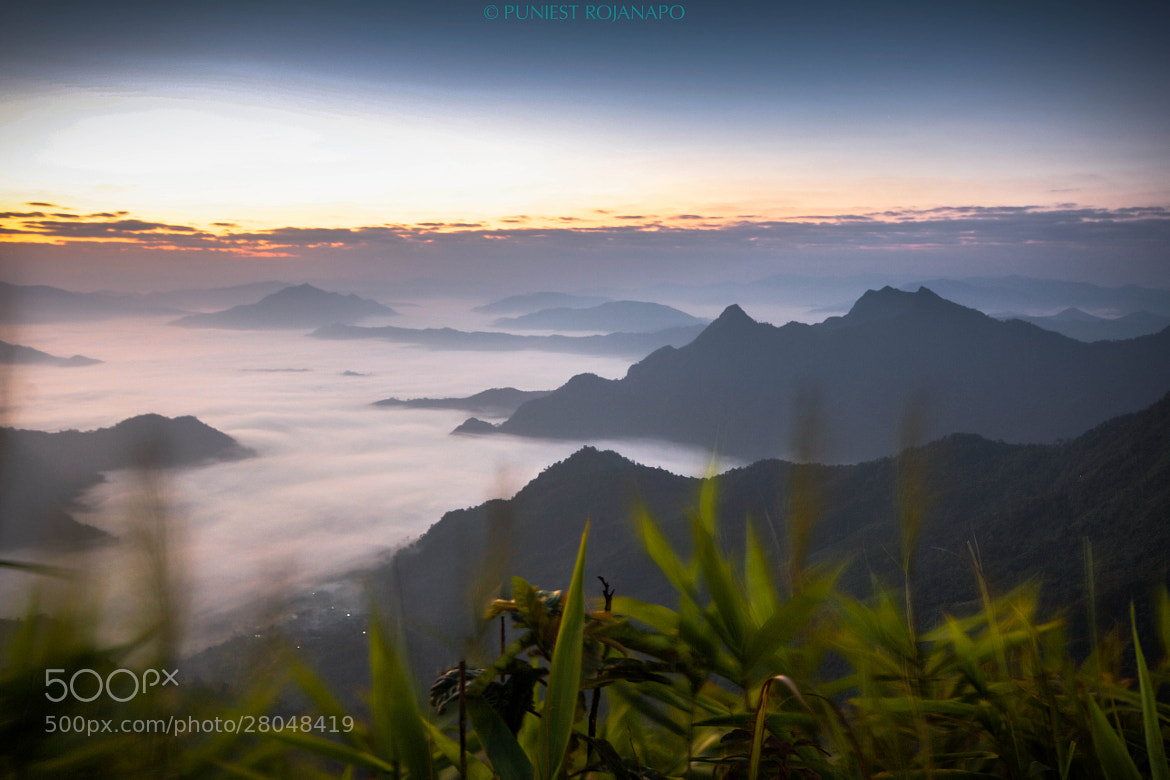 Photograph Heaven by Puniest Rojanapo on 500px