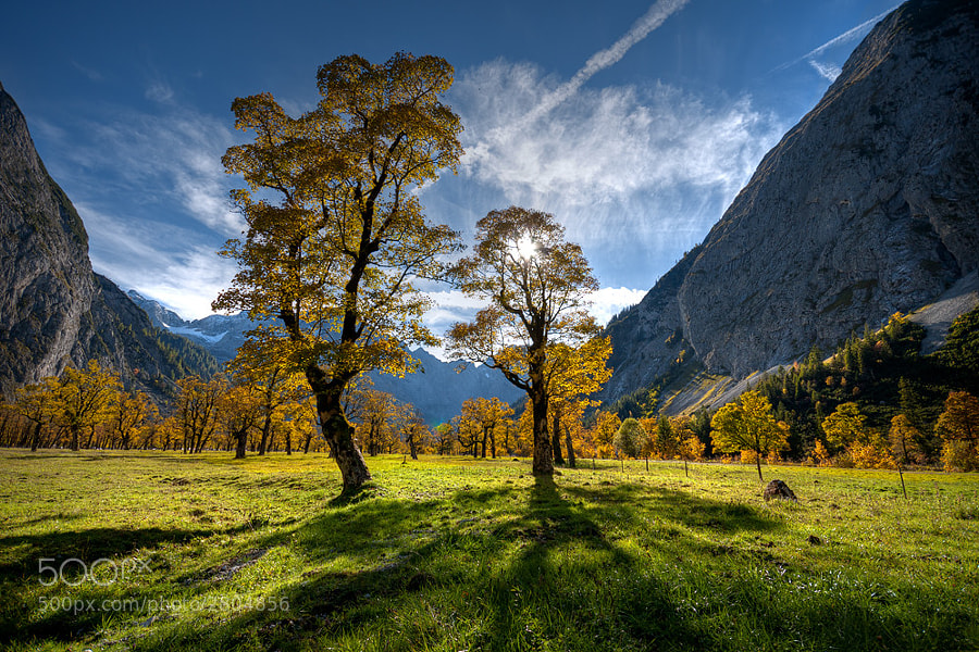 Photograph autumn by Markus Dorfmeister on 500px