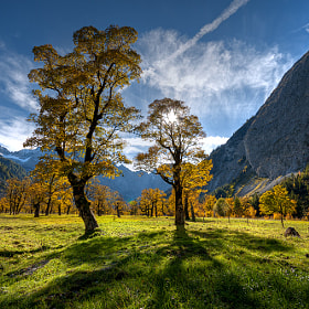 autumn by Markus Dorfmeister (Markus-Dorfmeister)) on 500px.com