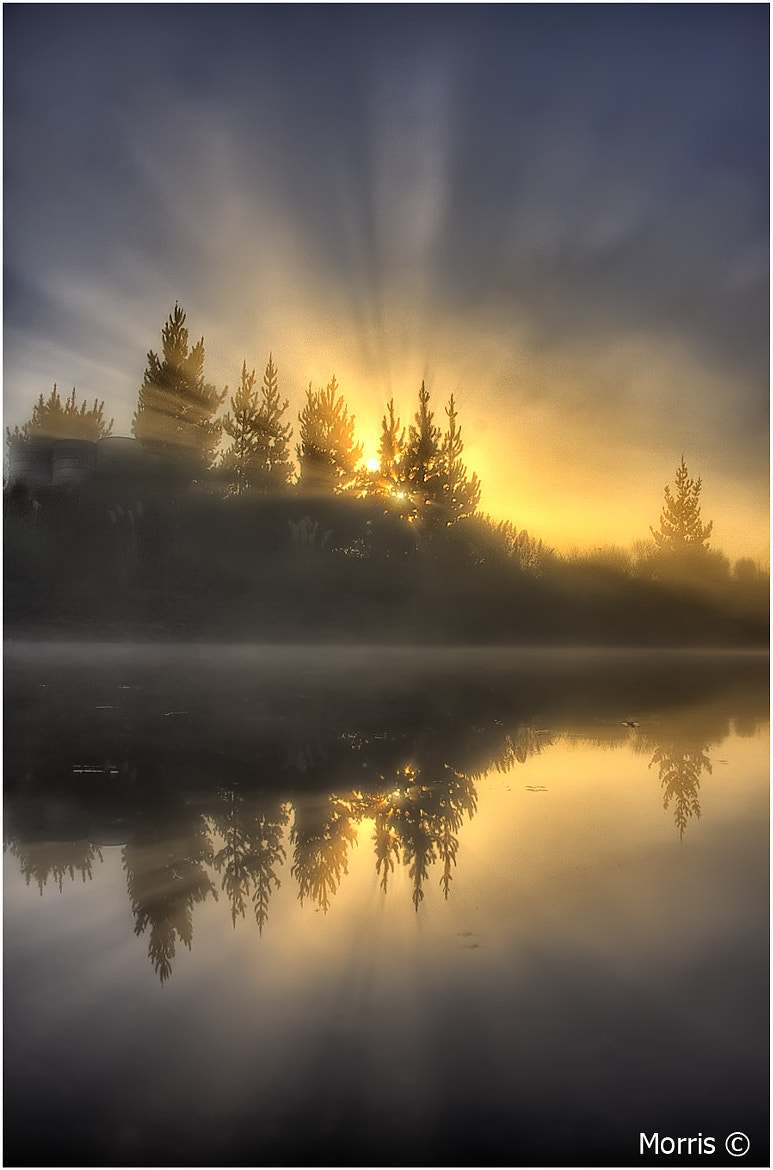 Photograph Misty Mornings by Dave Morris on 500px